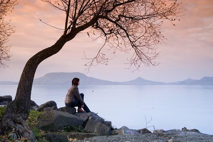 S'asseoir au pied de son arbre