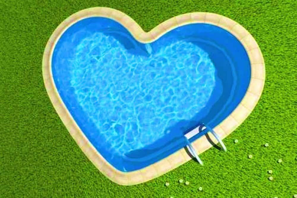 Le plongeon du cœur