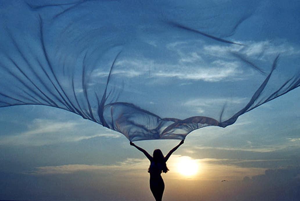 Le vent du vivant